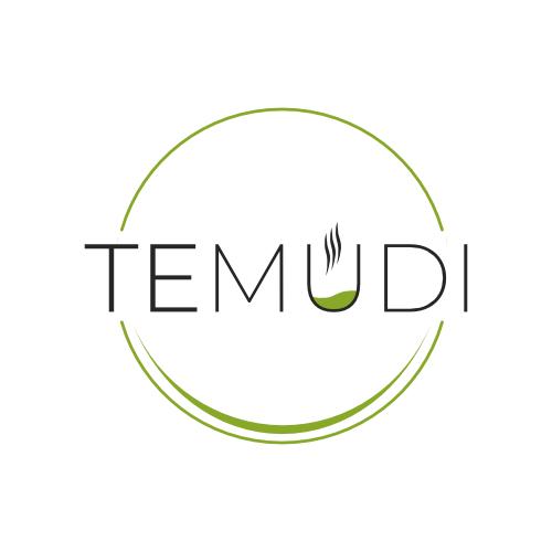 Temudi_logo_AMcreation