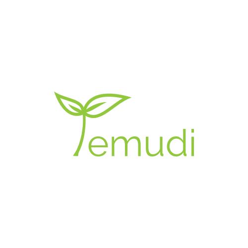 Temudi_logo_2_AMcreation