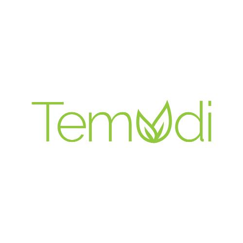 Temudi_logo_3_AMcreation