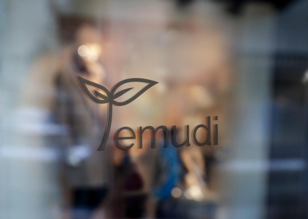 Temudi_logo_výloha_AMcreation
