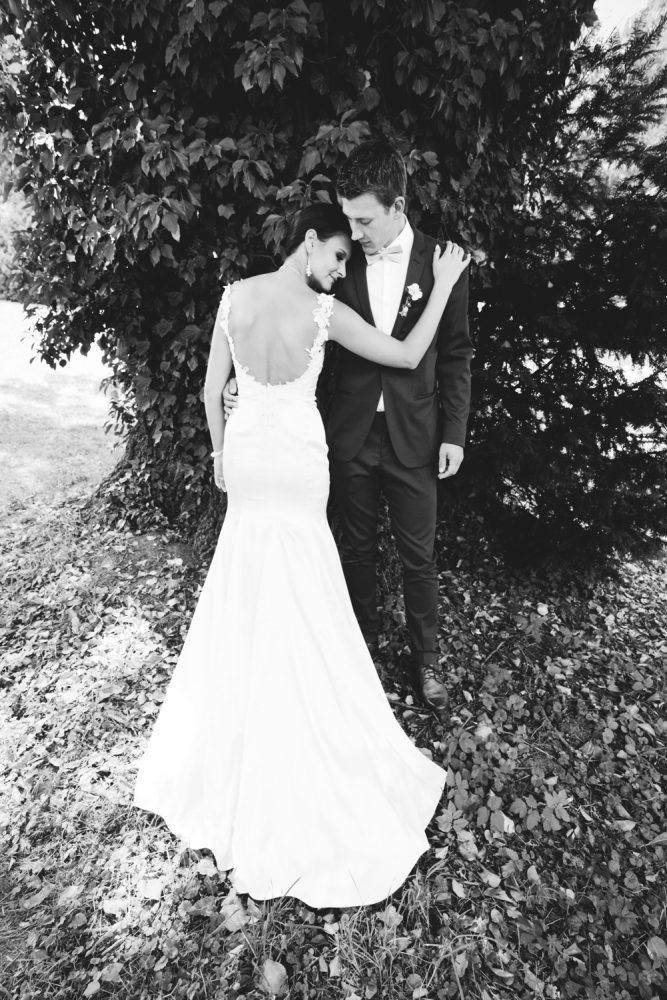 Svatební_foto_strom_AMcreation